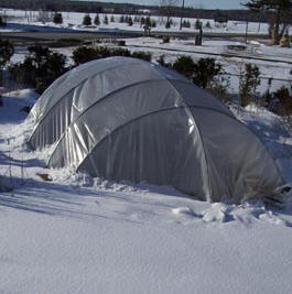 Winter Pond Cover