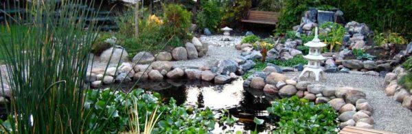 Pond FAQ's