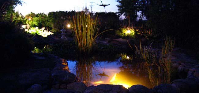 How to Design LED Landscape and Pond Lighting