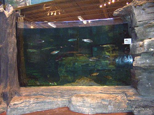 Bass Pro Shops Aquarium