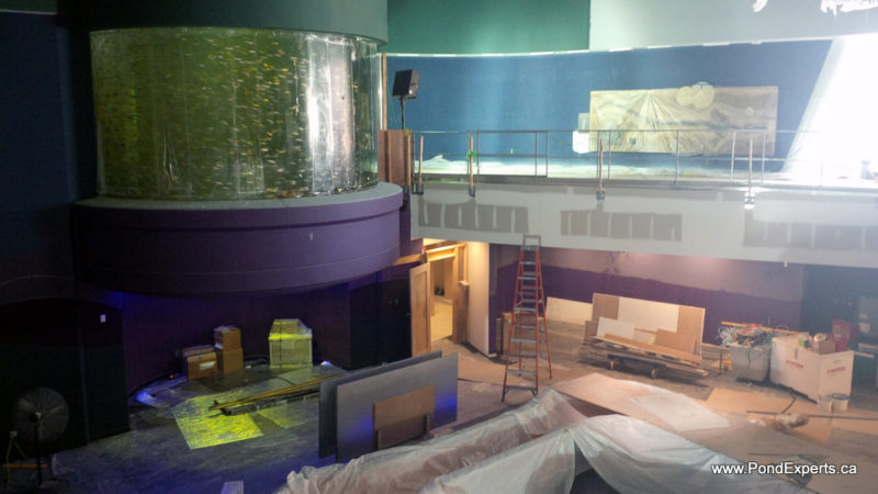 Ripley's Aquarium of Canada Construction