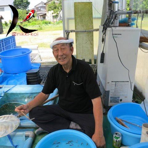 Aoki Koi Farm