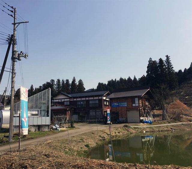 Hasegawa koi farm