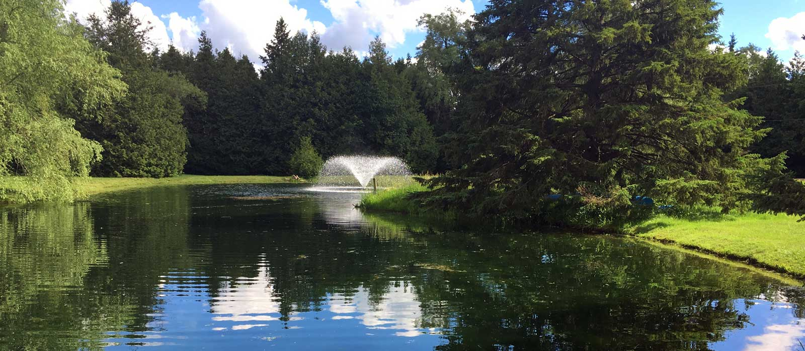 Hydrosphere pond supplies canada koi aquatic plants for Large pond maintenance