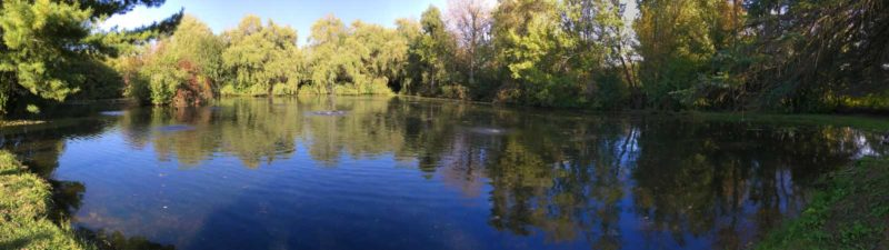 Large pond maintenance assessments and installations for Small pond care