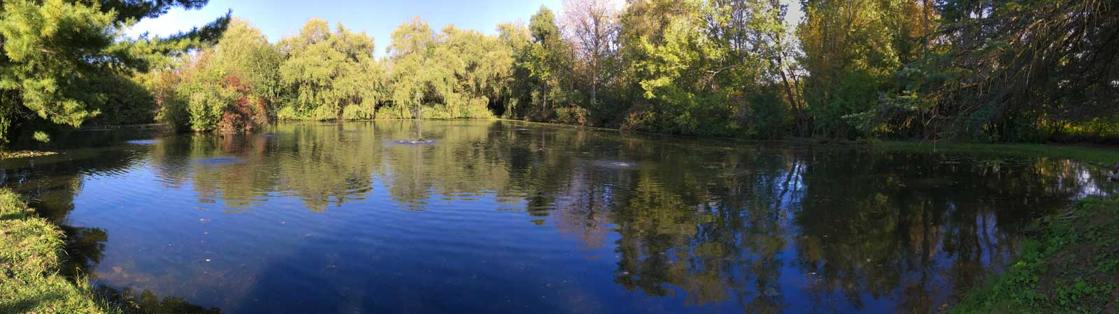 Large pond maintenance assessments and installations for Large pond maintenance