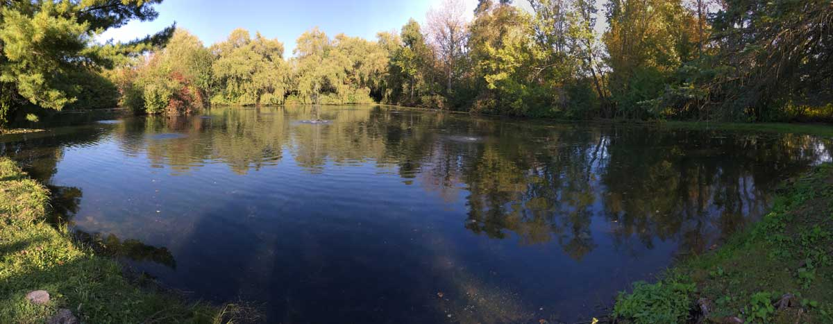 Large Pond Aeration - The key to a Natural, Clear, Healthy Pond