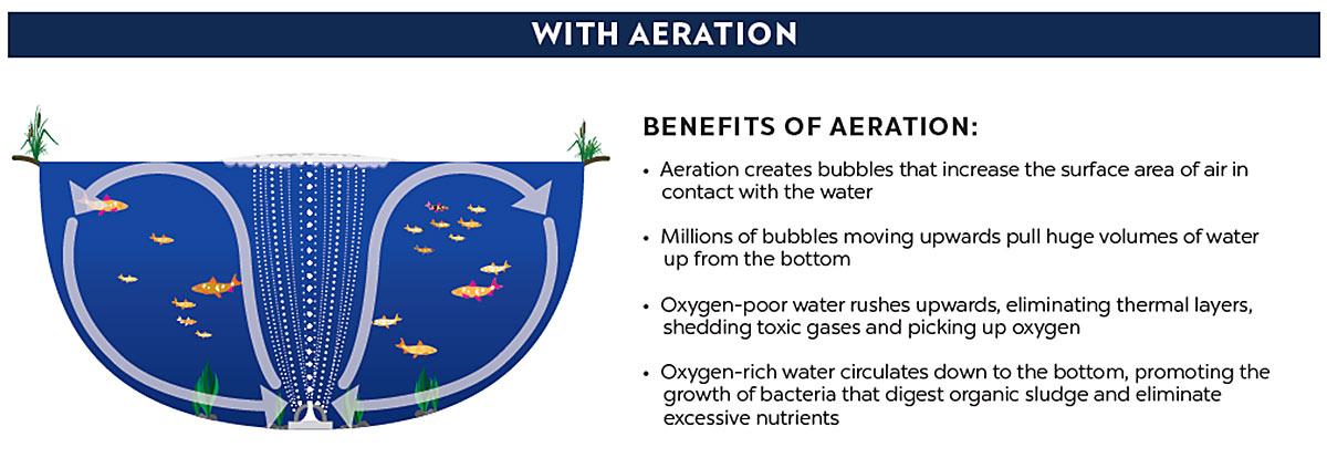 pond aeration diagram