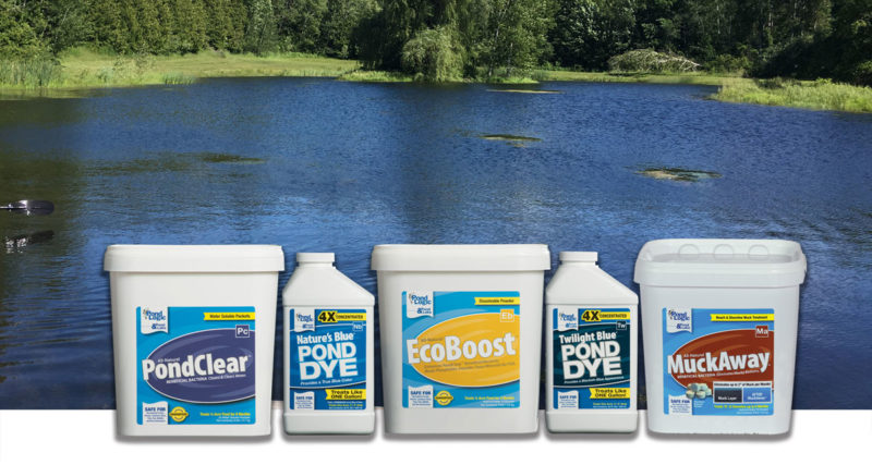 large pond algae treatments