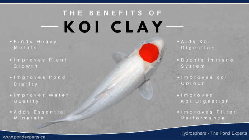 The Many Benefits of Koi Clay