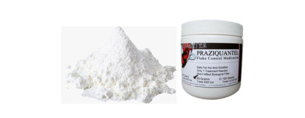 how to dissolve praziquantel