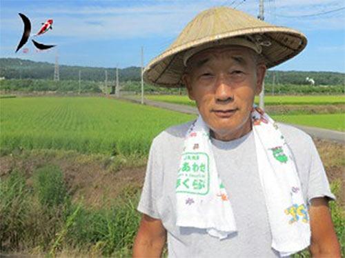 Suzuki Koi Farm