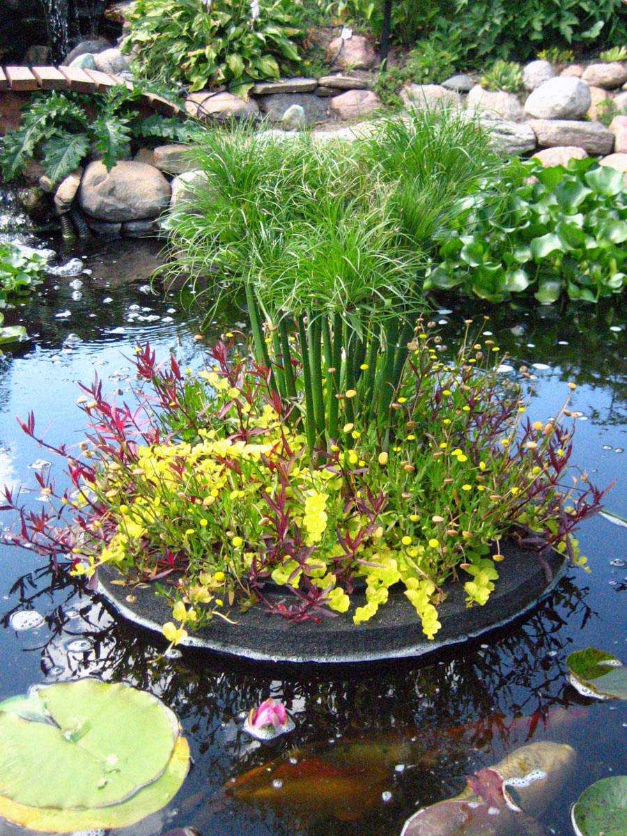 Custom Pond Planter Baskets Hydrosphere Water Gardens
